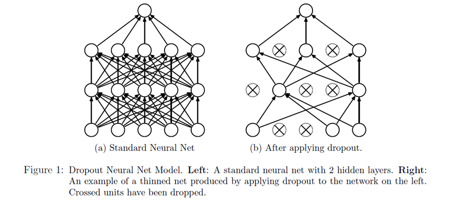 Dropout in a neuronal Net