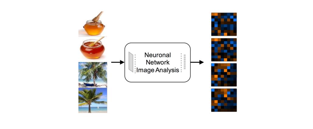 Kiano – visuelle Exploration mit Deep Learning – Data Science Blog