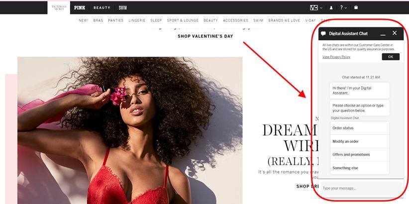 Screenshot taken on the official Victoria's Secret website